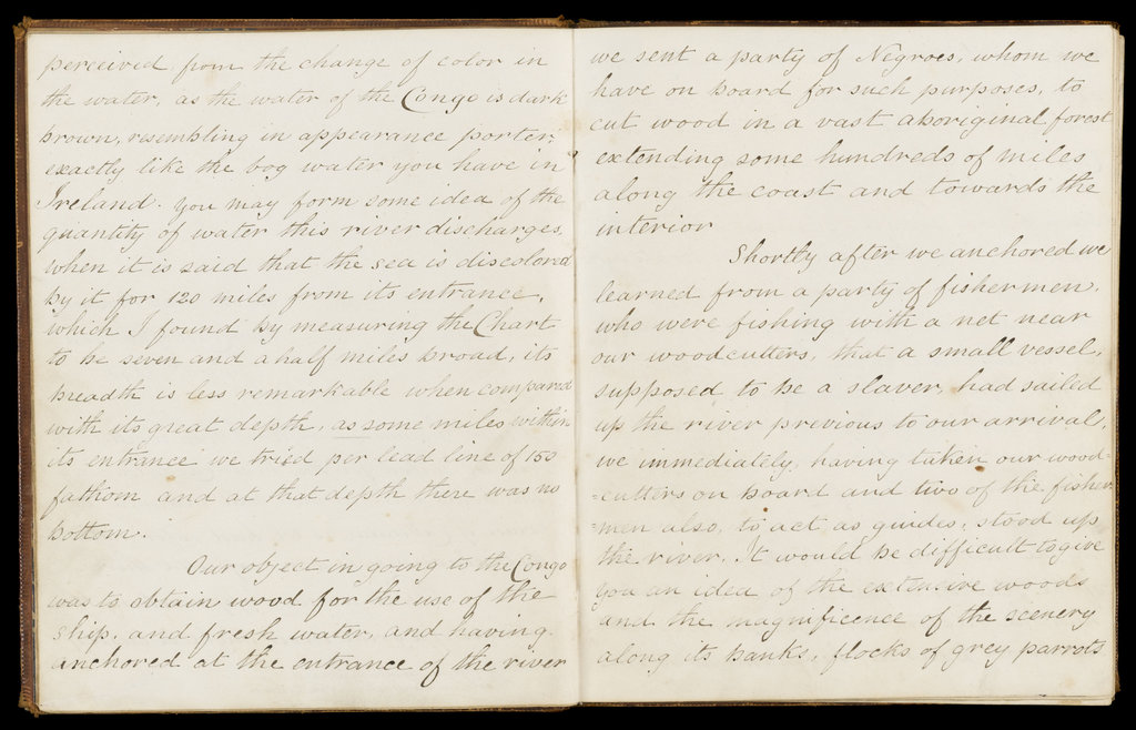 Detail of Journal of Dr McIlroy, RN, 1844 by unknown